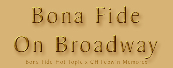 bonafide_on_broadway
